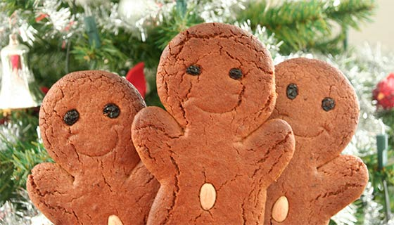 Thekitchenman's Gingerbread Person Cookies