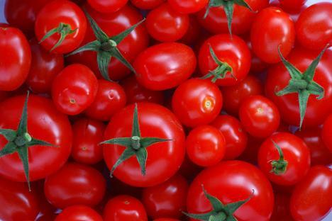 Championship Tomato Ketchup