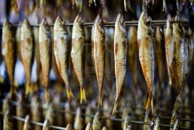 Winnipeg goldeye thekitchenman wayne conrad serbu for Cold smoking fish