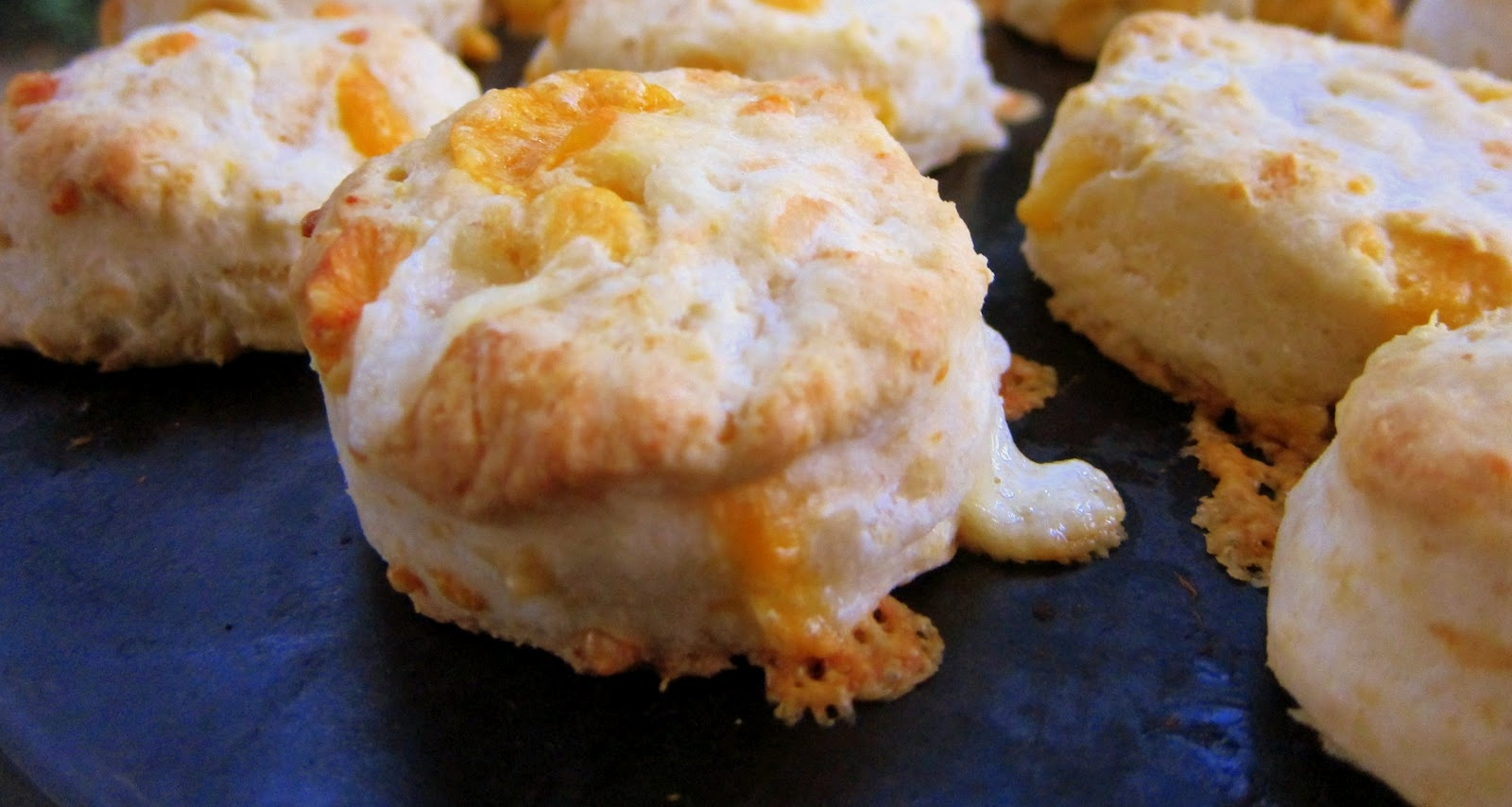 Knotty Pine Cheddar Cheese Scones