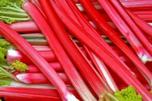 RedRhubarbStalks