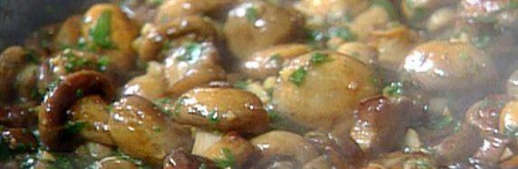 Wild Mushroom Bonanza