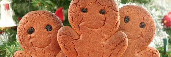 Xmas Ginger Breads